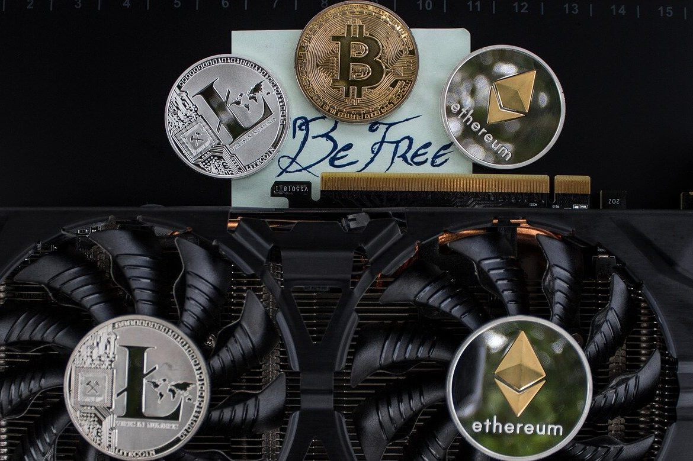 Konsten att investera – plattformen Cryptoeddu